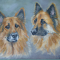 Learn to paint your dog - Woofs and Wags