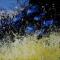 Robert Eadie - Art Exhibition - Spirit of Place
